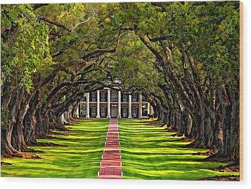 Oak Alley Paint  Wood Print by Steve Harrington