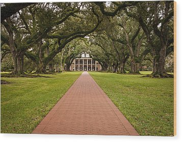 Oak Alley Plantation Wood Print