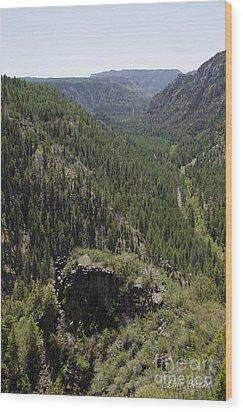 Oak Creek Canyon Overlook Wood Print by David Gordon