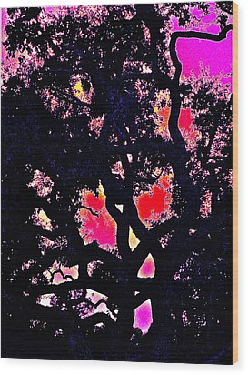 Wood Print featuring the photograph Oaks 10 by Pamela Cooper