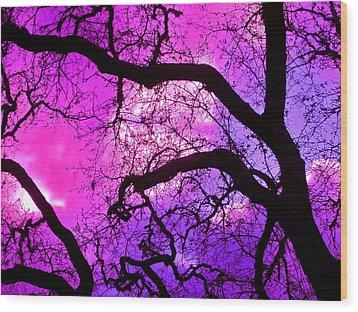 Oaks 17 Wood Print by Pamela Cooper