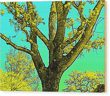 Wood Print featuring the photograph Oaks 3 by Pamela Cooper
