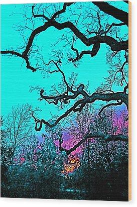 Oaks 4 Wood Print by Pamela Cooper