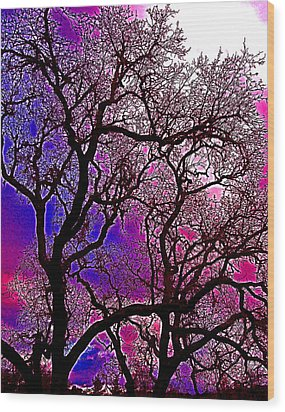 Wood Print featuring the photograph Oaks 6 by Pamela Cooper