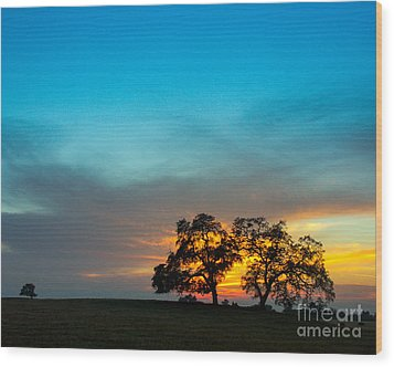 Wood Print featuring the photograph Oaks And Sunset 2 by Terry Garvin