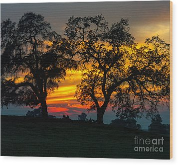Wood Print featuring the photograph Oaks And Sunset by Terry Garvin