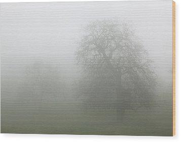 Wood Print featuring the photograph Oaks In Fog - Central California by Ram Vasudev