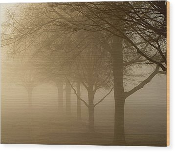 Wood Print featuring the photograph Oaks In The Fog by Greg Simmons