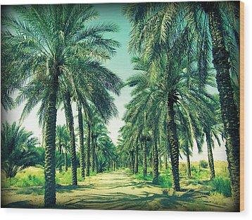 Oasis Wood Print by Peter Waters