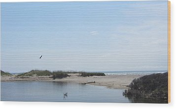 Ocean And Sound Wood Print by Cathy Lindsey