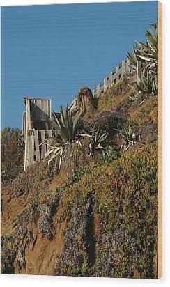 Ocean Beach Hillside Wood Print