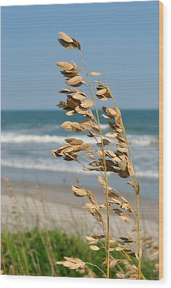 Ocean Breeze Wood Print