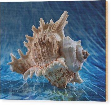 Ocean Breeze Wood Print by Tom Druin