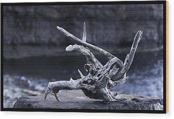 Ocean Driftwood  Wood Print