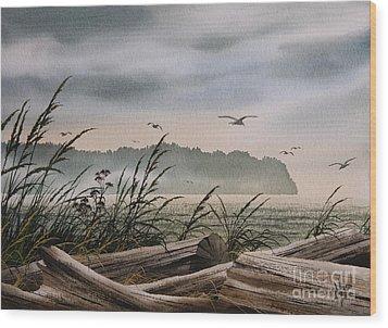 Ocean Shore Wood Print by James Williamson