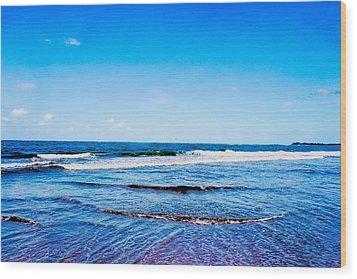 Ocean Trail At Isla Verde Wood Print by Sandra Pena de Ortiz