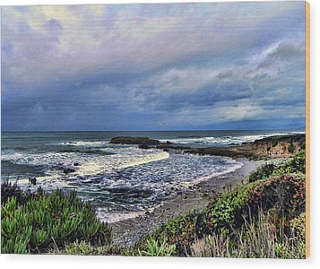 Ocean View Wood Print by Kathy Churchman