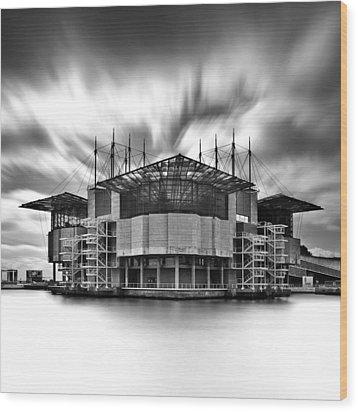 Oceanarium Wood Print by Jorge Maia