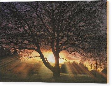 Ochill  Wood Print