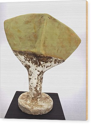 Ochre Humanum  Wood Print by Mark M  Mellon