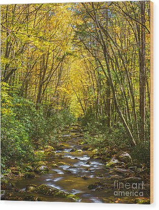 Wood Print featuring the photograph Oconaluftee Splendor by Carl Amoth