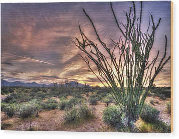 Ocotillo Sunset Wood Print