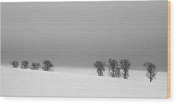 Octet Wood Print by Jaromir Hron