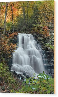 October Foliage Surrounding Erie Falls Wood Print