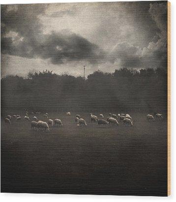 October Insight Wood Print by Taylan Apukovska