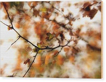 October Wood Print by Reka Lendvai