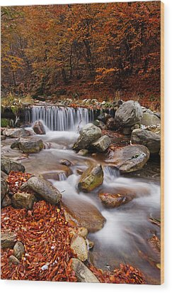 October Stream Wood Print by Mircea Costina Photography
