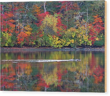 Wood Print featuring the photograph October's Colors by Dianne Cowen
