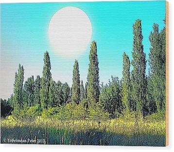 Odd Landscape Wood Print by Tobeimean Peter