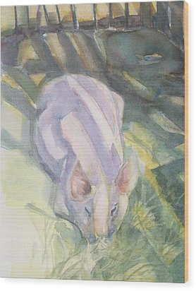 Ode To A Pig Wood Print by Grace Keown