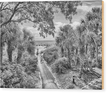 Wood Print featuring the photograph Off To The Beach by Howard Salmon