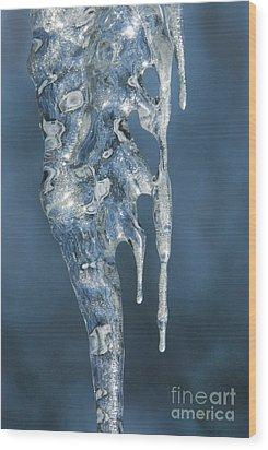 Offspring Wood Print by Sandra Bronstein
