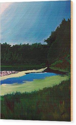 Oglebay Park - Palmer Course Wood Print