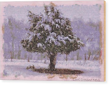 Oh Christmas Tree Wood Print by Lorri Crossno