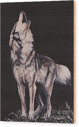 Oh No....coyote Art Wood Print by DiDi Higginbotham