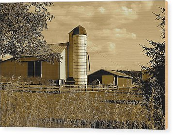 Ohio Farm In Sepia Wood Print by Frozen in Time Fine Art Photography