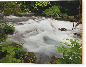 Oirase Stream Wood Print