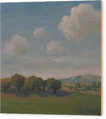 Ojai Oaks Wood Print