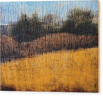 Oklahoma Prairie Landscape Wood Print by Ann Powell