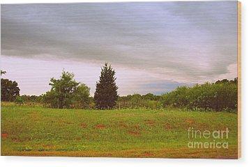 Oklahoma Storm Cloud Wood Print by Mickey Harkins