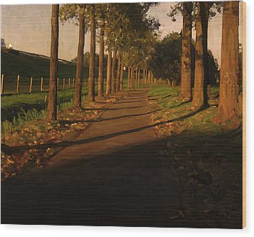 Wood Print featuring the painting Old And New Road In Tilburg by Nop Briex