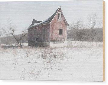 Old Barn - Brokeback Shack Wood Print by Gary Heller
