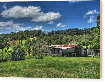 Old Barn In Lush Green Countryside Wood Print by Kaye Menner