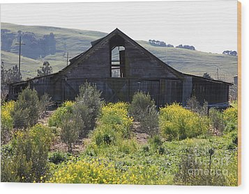 Old Barn In Sonoma California 5d22236 Wood Print by Wingsdomain Art and Photography