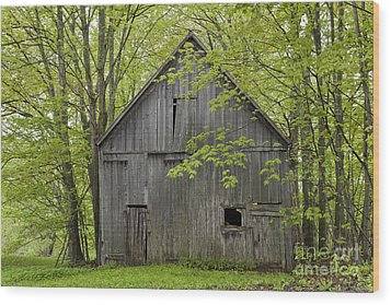 Old Barn In Spring Woods Wood Print by Alan L Graham