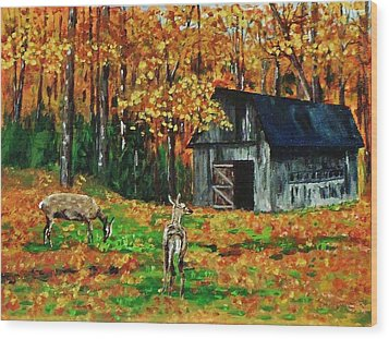 Old Barn In The Woods Wood Print
